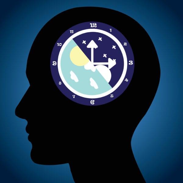 Illustration of the circadian rhythm