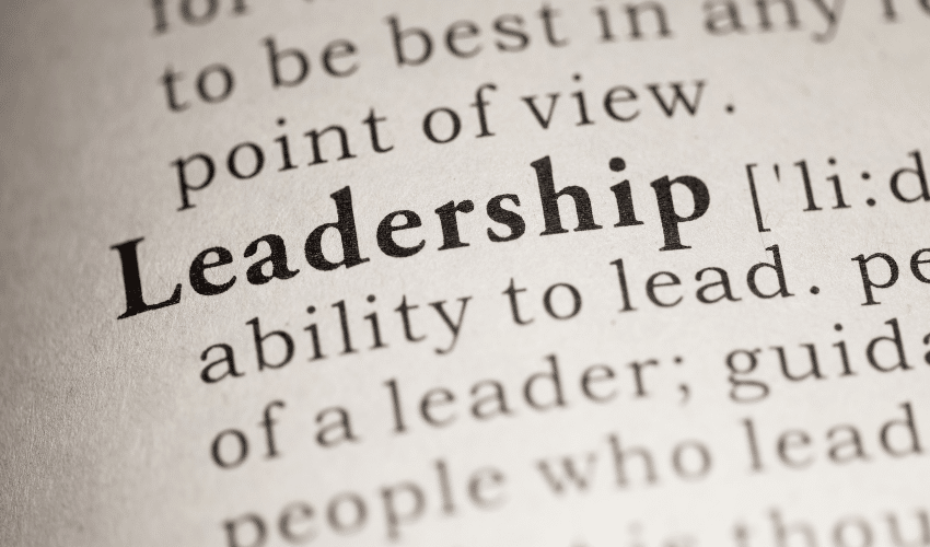 Leadership Insights for Professionals